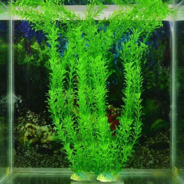 Cây cảnh xanh trang trí bể cá Huanhuang® - INTL