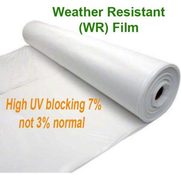 7% UV Plastic Greenhouse Plastik UV Rumah Pelindung Hujan RPH 12 Kaki Lebar x 1 atau 3 kaki panjang