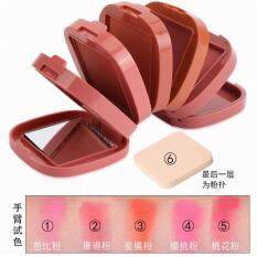 5 In 1 Blusher By Daiduola By Zl Cosmetic.
