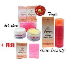 COLLAGEN PLUS VITAMIN E SET WITH TONER CPVE 4in1 FREE 1PC SOAP