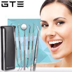 GTE 6pcs Professional Handle Stainless Steel Medical Dentist Teeth Explorer Needle Cleaning Dental Tool Kit Set
