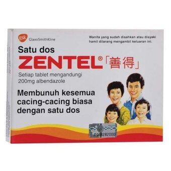 Zentel Tablet 2T