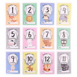 12 Tờ Thẻ Chia Sẻ Ảnh Cột Mốc Bộ Quà Tặng Thẻ Tuổi Bé-Thẻ Mốc Bé, Thẻ Ảnh Bé-Ảnh Sơ Sinh thumbnail