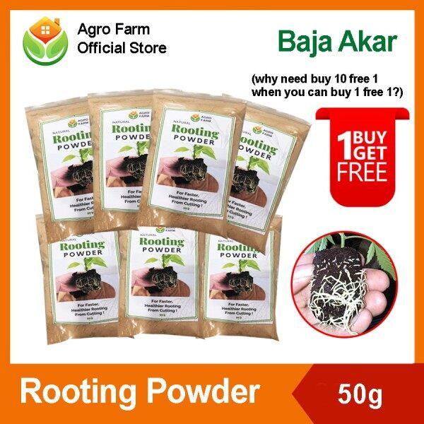 【BUY 1 FREE 1 !!】Rooting Powder / Rooting Hormone / Baja Akar / Penggalak Akar / Rooting Phosphate / Stimulate Root Growth