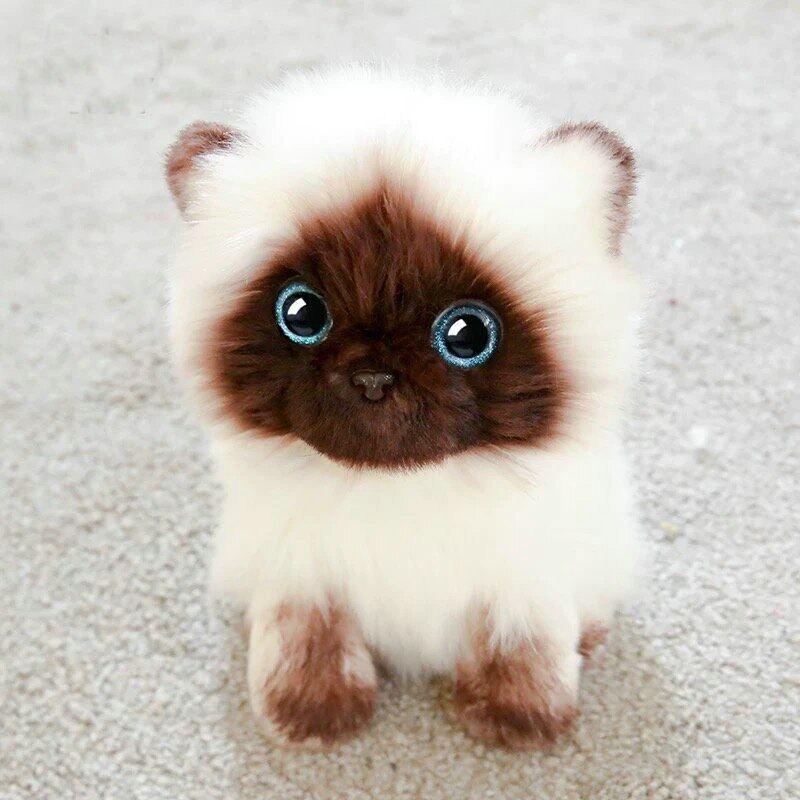 Boneka Kucing Siam Mainan Simulasi Kucing Siam Mata Kucing Payet Biru Boneka Ragdoll Wajah Coklat Dan Putih Mainan Boneka Dekorasi Rumah Kucing Lazada Indonesia