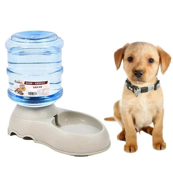 1 Gallon Tự Động Cho Thú Cưng Nước Vòi Nước Uống Đựng Bát Đĩa Waterer Thức Ăn dành cho Chó Con Chó Mèo