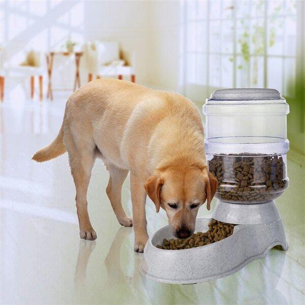 Máy Cho Chó Ăn Thức Ăn Tự Động 3.5L Hộp Đựng Bát Ăn Cho Thú Cưng Hộp Đựng Thức Ăn Chậm Cho Đài Phun Nước Sức Chứa Lớn Phụ Kiện Cho Chó Mèo Lớn