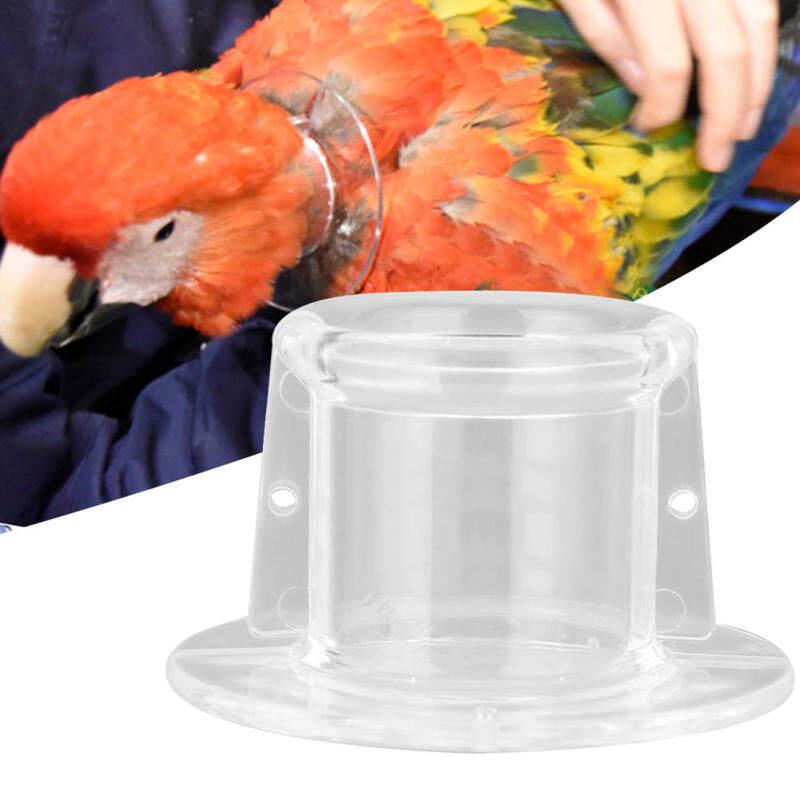 Pet Parrot Chống Cắn Hái Lông Vết Thương Chữa Lành Cổ Áo Bảo Vệ Cổ Áo Cho Chim