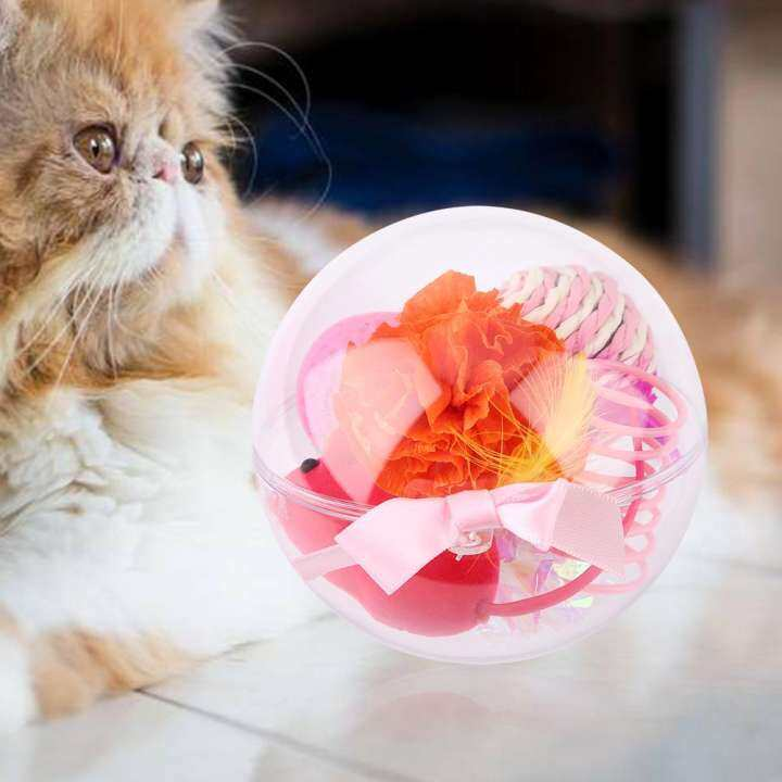 Lucu Kucing Kucing Kucing Bermain Mainan Kucing Pelbagai Warna Set Bola Mainan Interaktif Dengan Pembungkusan Indah Serbuk Lazada