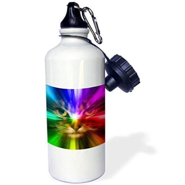 3dRose wb_18499_1 Domestic Cat Surrounded with a Rainbow of Colors Sports Water Bottle, 21 oz, Brown - intl