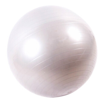 Cocotina Exercise Pilates Balance Yoga Gym Fitness Ball (Silver) – 65cm