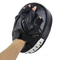 Sport Martial Arts Sanda Muay Thai Boxing Gloves Training Equipment Strike Pads – intl