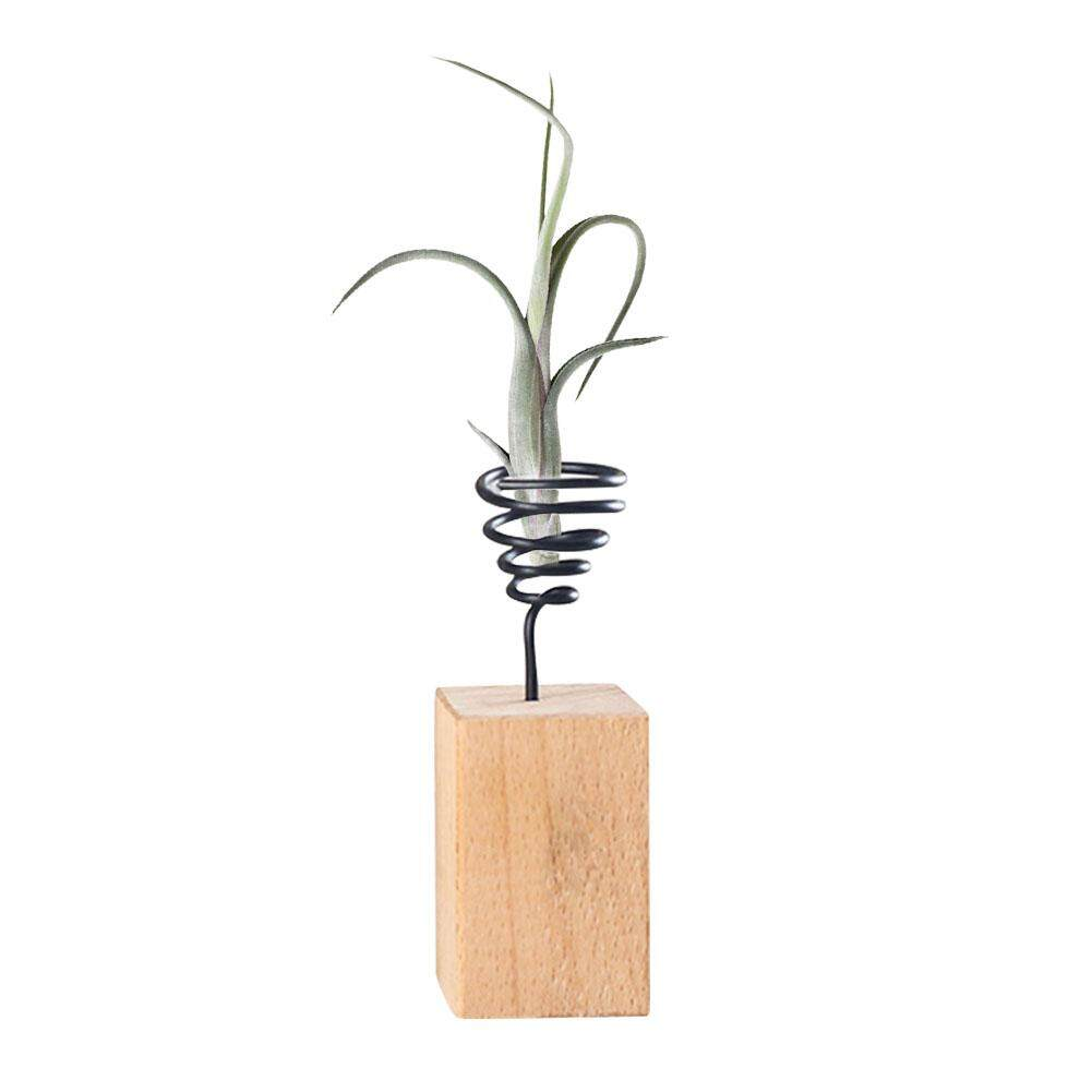 GUO Wooden Base Flower Stand for Tillandsia Flower Pot Rack Micro Landscape Accessories Solid Wood Base Iron Wire Holder