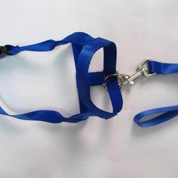 COD Ready Stock Dog Pet Puppy Training Head Collar Halti Halter Harness Gentle Leader Rope