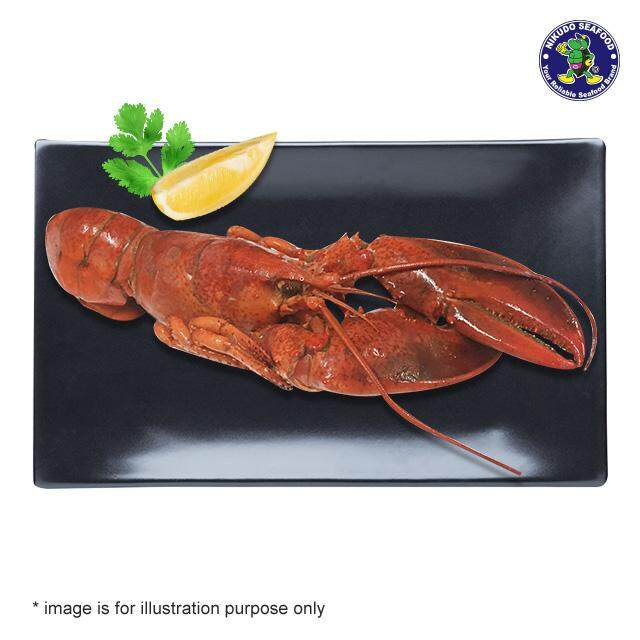 (KL & Selangor Delivery Only) Nikudo - Boston Cooked Lobster (±0.450g/pcs)