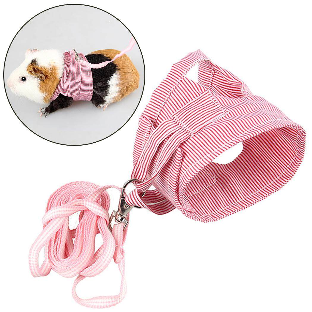 Small Animal Harness Adjustable Pet Harness Pet Supplies With Leash For Hamster Hedgehog Cobaya, L By Five Star Store 2zz.