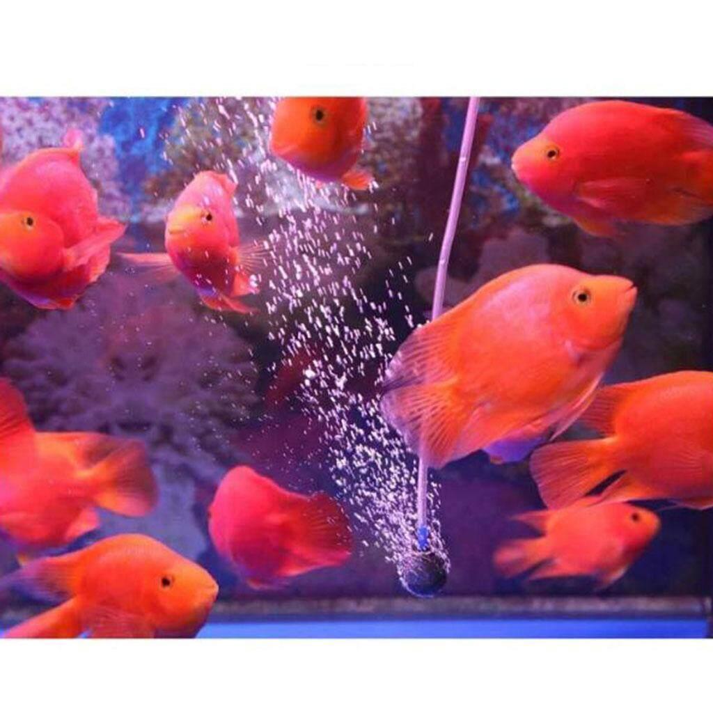 Miracle Shining Plastic Solar Powered USB Rechargeable Aquarium Fish Tank Oxygen Pumps