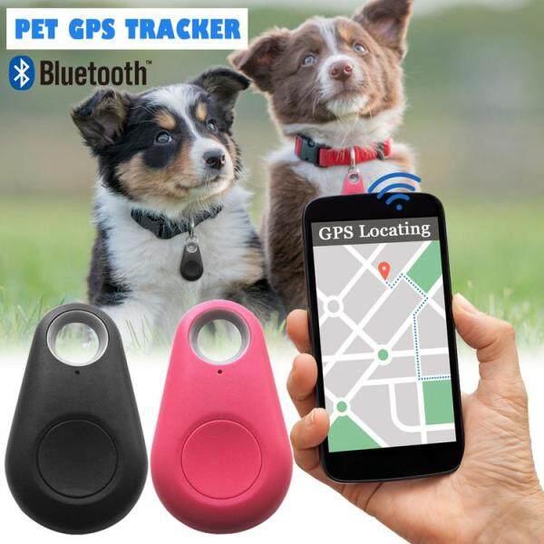 Chó Thông Minh Bộ Định Vị Bluetooth Thiết Bị Định Vị Thú Cưng Bằng GPS Báo Động Ảnh Tự Sướng Chụp Từ Xa Chụp Màn Trập Tự Động Không Dây Tracker Cho Vật Nuôi