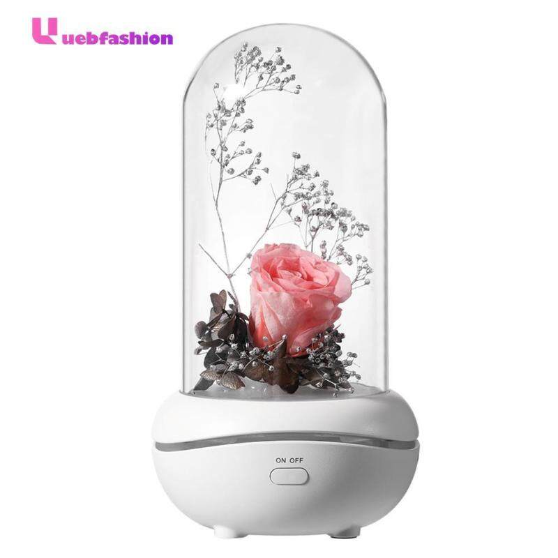 7 Color LED Humidifier Aroma Diffuser USB Immortal Rose Aromatherapy Lamp Singapore