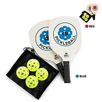 Pickleball Paddle Starter Set in RED or Blue: 2 Paddles, Carry Bag, 4 Indoor Pickle Balls by Day 1 Sports - Beginner and Recreational Pickleball Kit with Lightweight, Wooden Rackets and Accessories
