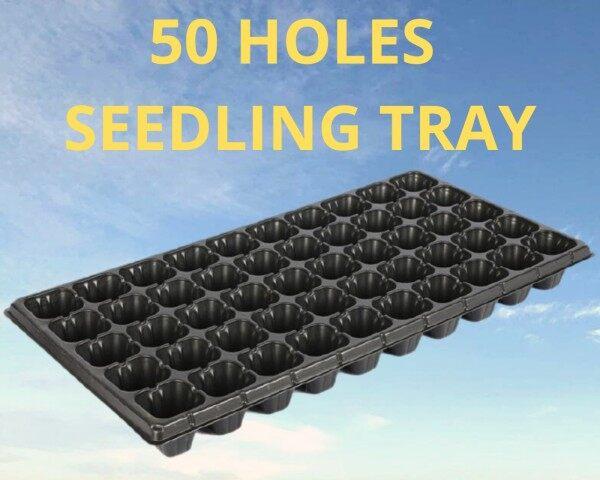 seedling tray 50 holes / bekas semaian 50 lubang