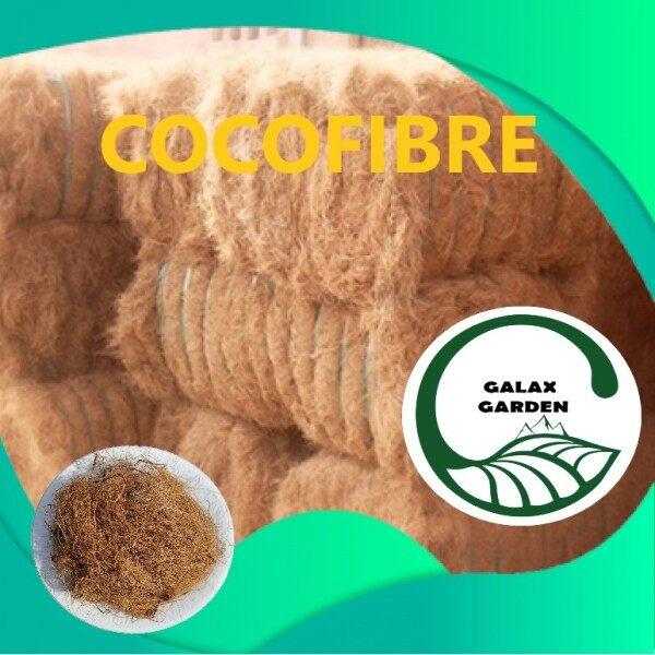 ✽Sabut kelapa kasar/Coconut coco fibre for gardening plant growing♠