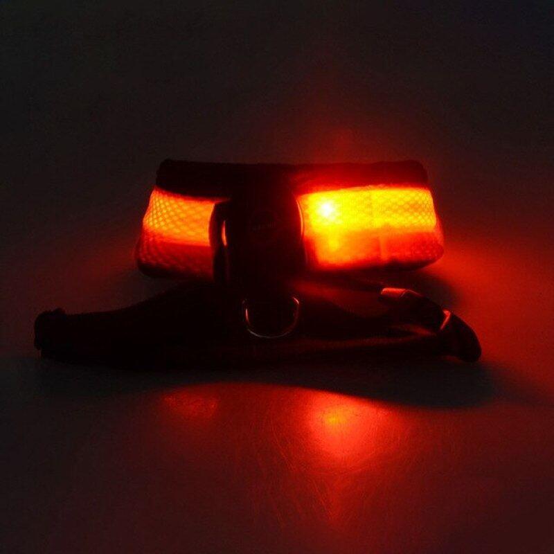 Pet LED Shining Khai Thác Dây Cầm Tay Vòng Cổ Cho Chó Chó Đai Cổ Phát Sáng Đèn Ban Đêm Flash Vòng Cổ