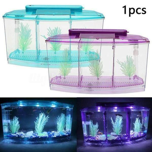 Bể Cá Mini Bể Cá Betta Hộp Cá Bể Cá Văn Phòng Cá Nhỏ Bể Cá Nhiệt Đới Chiên Nở