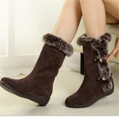 Women Long Canister Boots 2017 Cotton Plush Winter Snow Boots Warm All-Match Leisure Fashion Shoes(brown) By The Bravo Store.