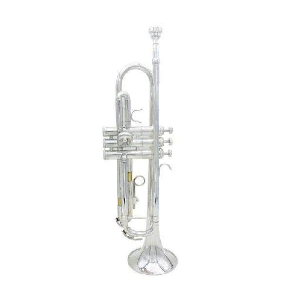 ammoon Beginners introduction 5-piece set Bb B flat trumpet brass brass instrument Malaysia