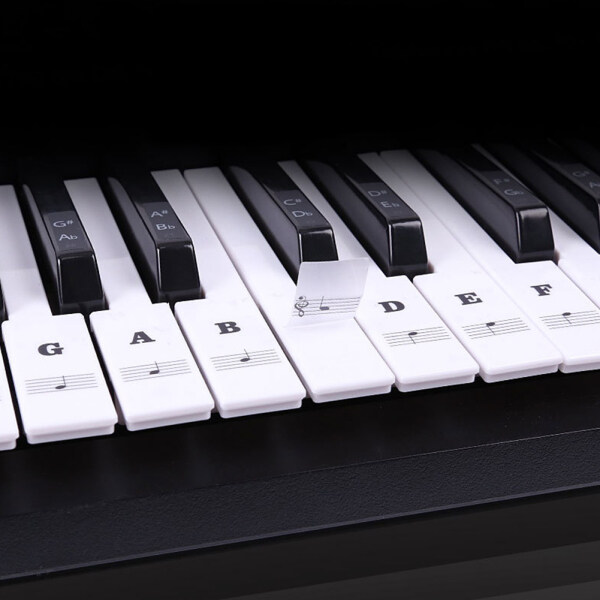 Transparent Piano Keyboard Sticker 88 Keys Electronic Keyboard Piano Sticker Malaysia