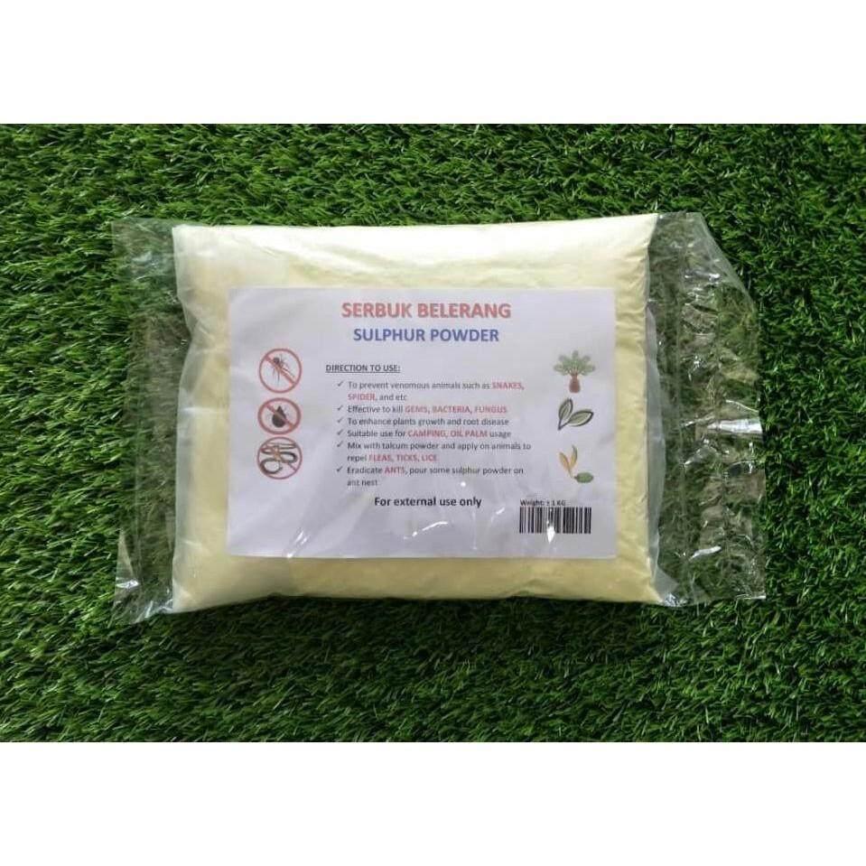 1 KG Sulfur Powder Belerang Sulphur Snake Repellent
