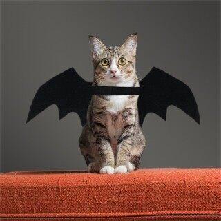 Antives Dây Đeo Cổ Cho Thú Cưng Trang Trí Tiệc Halloween, Phụ Kiện Hóa Trang Cho Chó Và Mèo, Vòng Cổ Khóa Điều Chỉnh Được, Phụ Kiện Cho Thú Cưng thumbnail