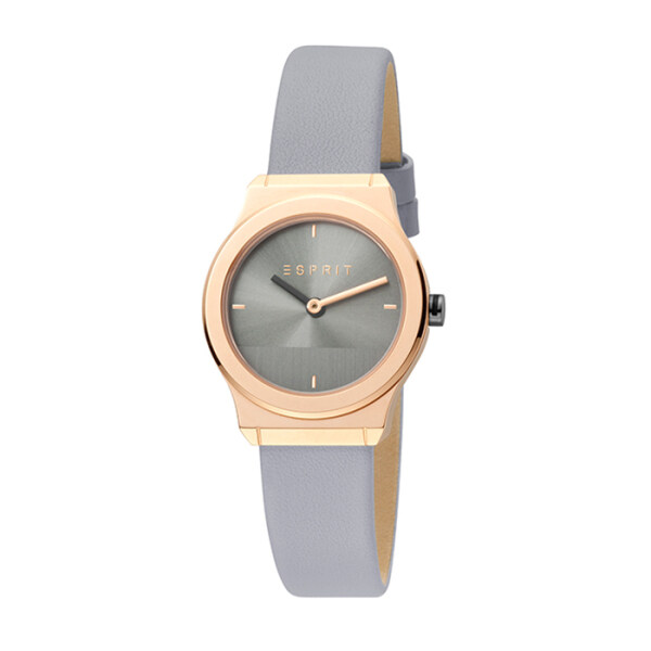 Esprit Magnolia Mini 28mm Mini Steel Women Watch Malaysia