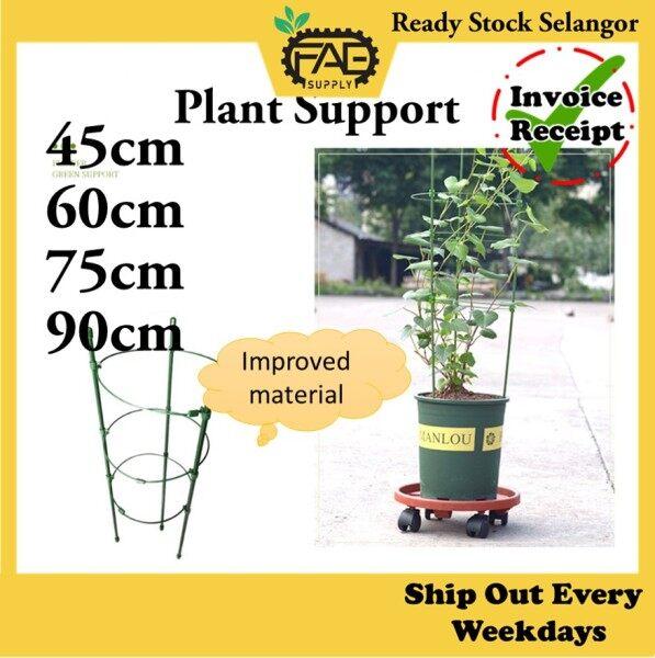 Conical Trellis Plant Support Frame Gardening Flower Stand tomato Vine Climbing Rack 45cm 60cm 75cm