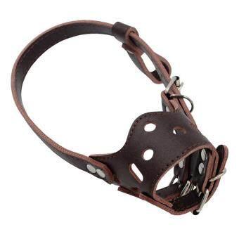Terbaik Seller Sunweb Kuat Anjing Moncong Anti Gigitan Mencegah Kulit Mulut Dapat Disesuaikan Tali Masker Hewan