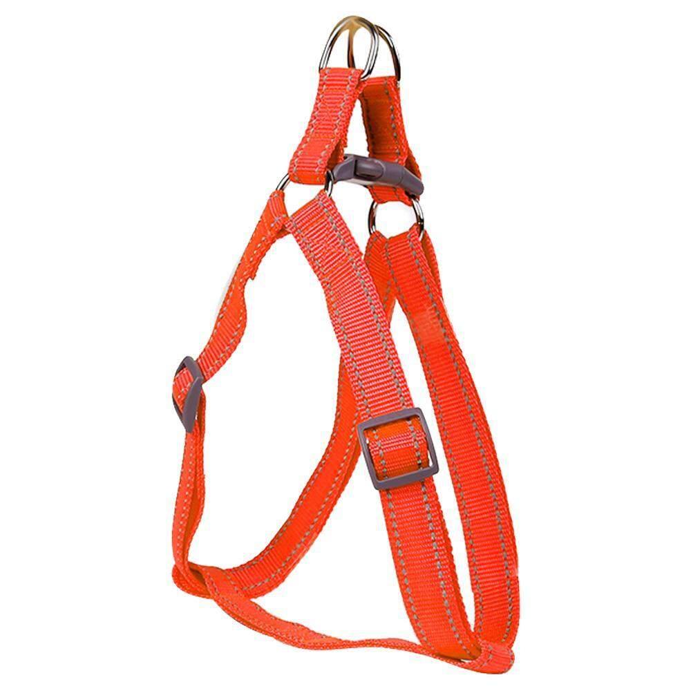 Jingot อุปกรณ์สำหรับสัตว์เลี้ยงปรับแรงจูงใจปลอกคอสุนัขไนลอน Night Safety Flashing สายจูงสุนัขโกลว์ (orange, L, ไนล่อน, Bagged) - Intl By Jingot.