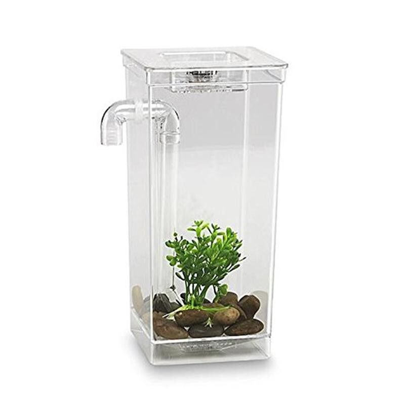 Discounted Kids Fish Aquarium My Fun Fish Self Cleaning Tank Complete Aquarium Setup Intl