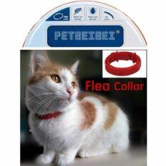 Kill Flea & Tick Collar For Cat Pet Supplies Product Adjustable For Small Dogs Flea Collars By Panao Store.