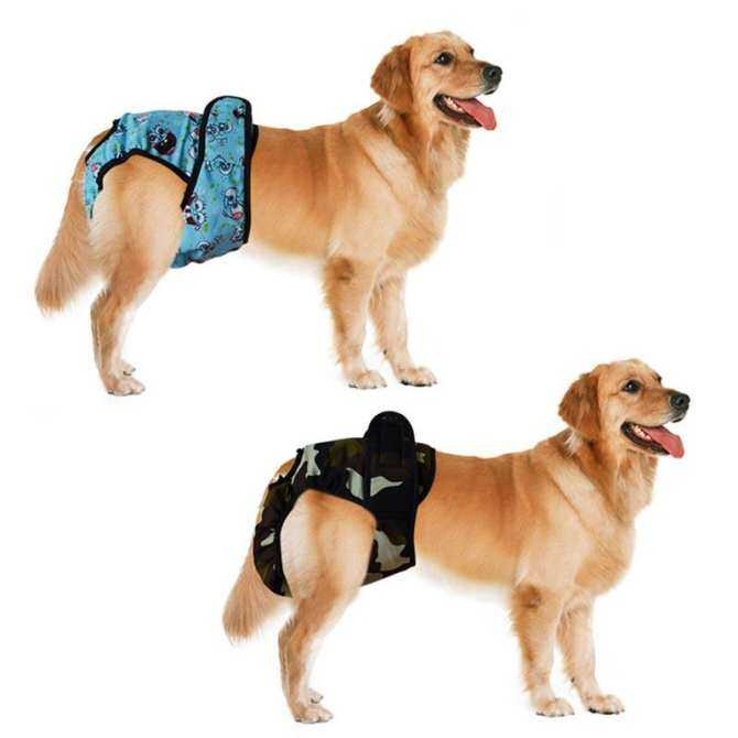 ... L Pet Large Dog Diaper Sanitary Physiological Pants Washable Female Dog Shorts Panties Menstruation Underwear ...