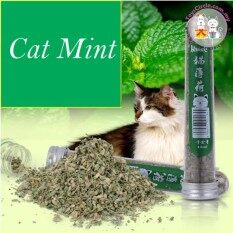Nature Cat Mint Play Toys Ball Coated With Catnip & Bell Toy For Pet Kitten And Cat By Toys Circle Online Pet Shop.