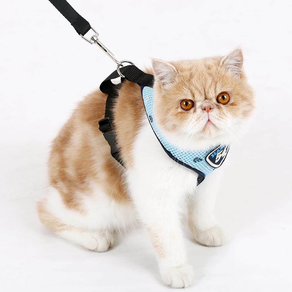 Pet Cat Harness Vest Leashes Suit Navy Blue Pet Harness Pet Puppy Cat Harness Leashes For Small Cat Pet,blue By Reasin Store.
