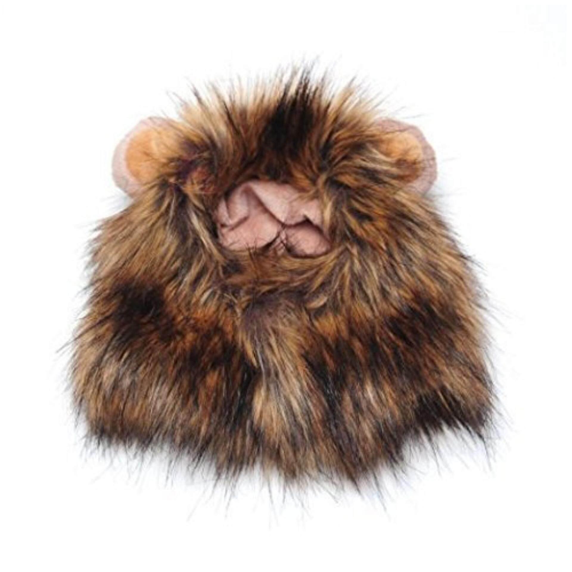 หมวกสุนัขสัตว์เลี้ยงสัตว์เลี้ยงแมวสิงโตวิกผมหูขนาดเล็กเสื้อผ้าสัตว์เลี้ยง/สัตว์เลี้ยงตกแต่งยอดนิยมแต่งตัว - นานาชาติ By Topmissdeng.