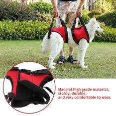 Portable Dog Best Lift And Assist Support Rehabilitation Harness With Handle For Canines Aid (rear Leg S) By Rongshida.