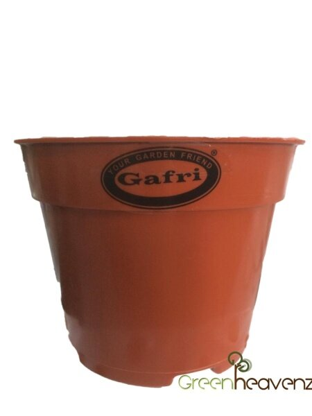 GHZ - GAFRI GP105 Flower Pot Plastic Pasu Bunga Plastik