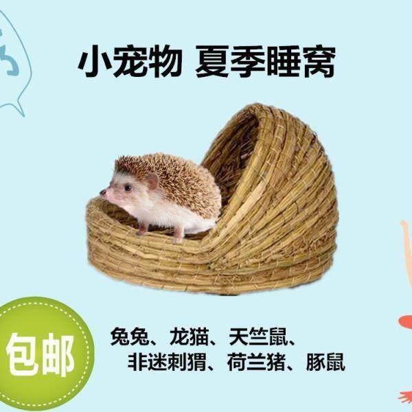 【Giảm Giá 50% 】 Trong Kho Bán Giáng Sinh Christnhím Hamster Totoro Sóc Mùa Hè Là Tốt Nhất Bồ Câu Thỏ Guinea Lợn Thủ Công Ngủ Den Sản Phẩm Vật Nuôi