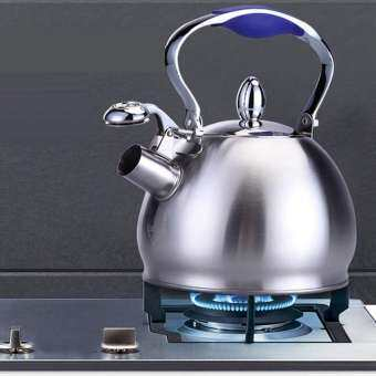 2.5L Stainless Steel Whistling Tea Kettle Coffee Tea Pot Stovetop Kettle Infuser Teapots Strainer Included(Single Handle)-