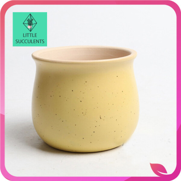 LITTLE SUCCULENTS  Bigger size Macaron color Succulent and Cactus Handmade Plant Pot (no included plants) READY STOCK