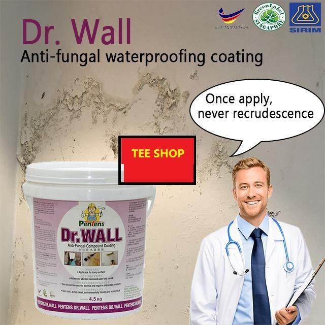Pentens Dr. WALL Anti-fungal Coating, Paint/Joint Compound & Putty Filler ~1kg