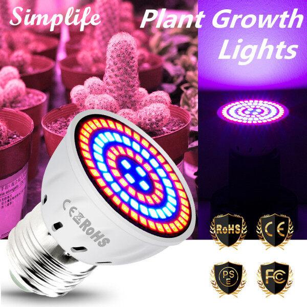 Đèn Led trồng cây simplife 220V, 60 bóng đèn LED E27 với quang phổ màu xanh đỏ, Đèn trồng cây trong nhà